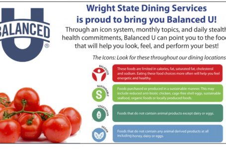 The Concept of Food State Nutrition