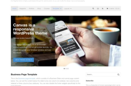 Selecting Your Next WordPress Theme – What to Look at