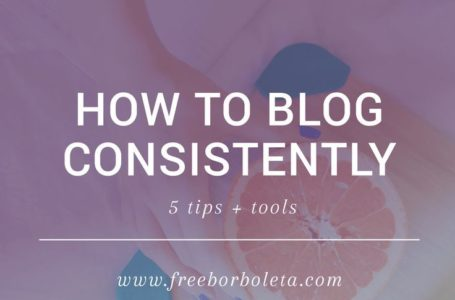 Blogger Survival Guide – 5 Tips to Survive the Blogging World