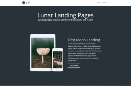 Use WordPress to Build a Landing Page