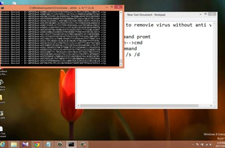 Remove Viruses From Your Computer – Tips and Tricks