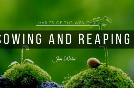 Understanding the Law of Sowing and Reaping