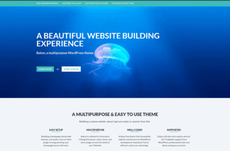 Features That Your Next WordPress Theme Needs to Have