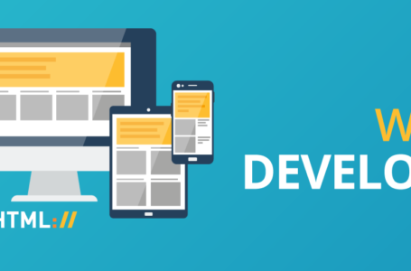 Web Design Professionals – Do You Really Need Them?