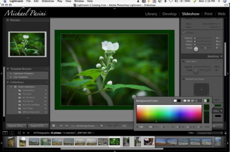 Do You Need Digital Photography Software?