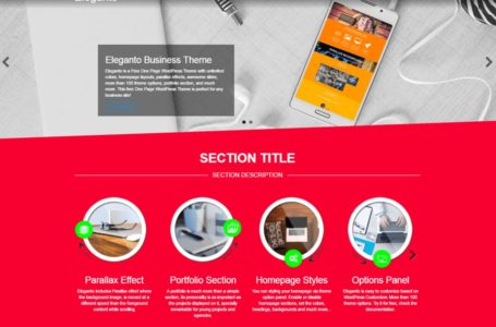 How to Find the Best WordPress Theme for Your Business