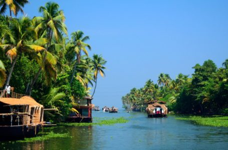 Explore Wilderness on Your South India Tours