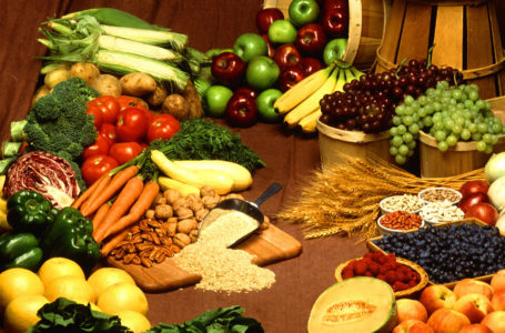 Basics of Healthy Human Food